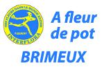 A FLEUR DE POT - Brimeux